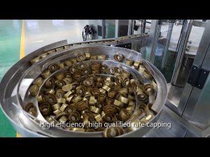 аутоматски сос клипа серво, мед, мармелада, линија за пуњење течности високе вискозности